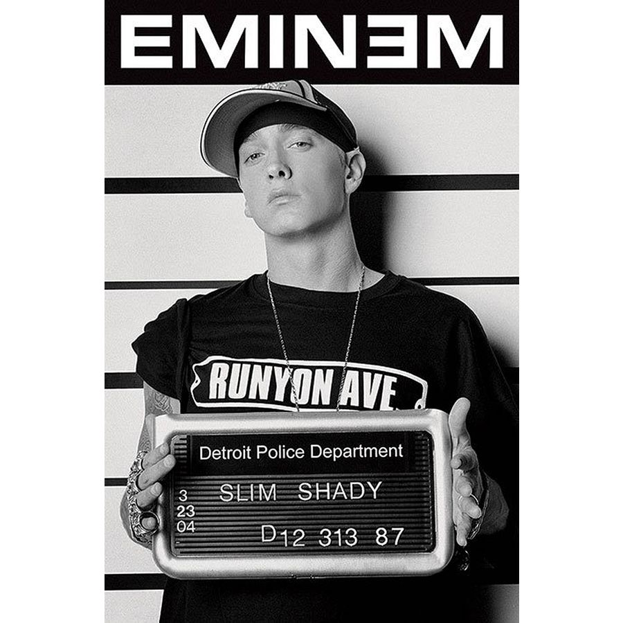 Does eminem have a criminal record