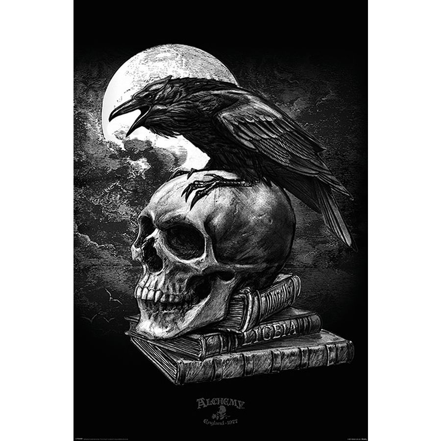 alchemy poster poe 39 s raven posters buy now in the shop close up gmbh. Black Bedroom Furniture Sets. Home Design Ideas