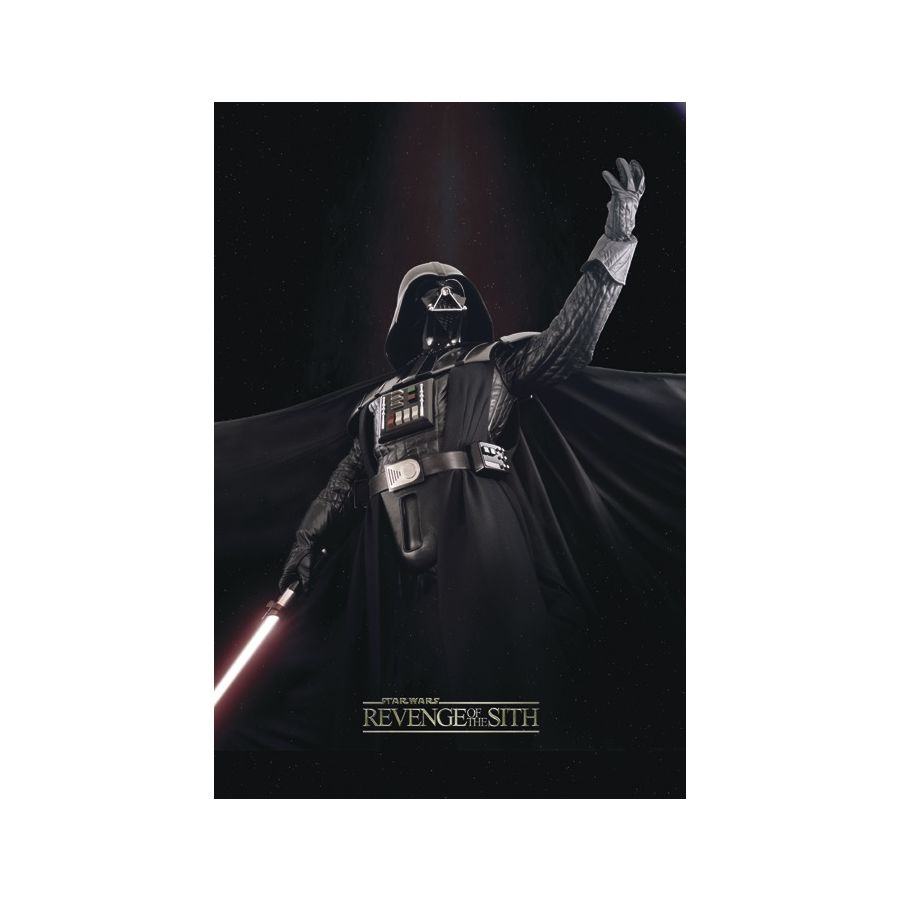 Star Wars Episode Iii Poster Revenge Of The Sith Posters Buy Now In The Shop Close Up Gmbh