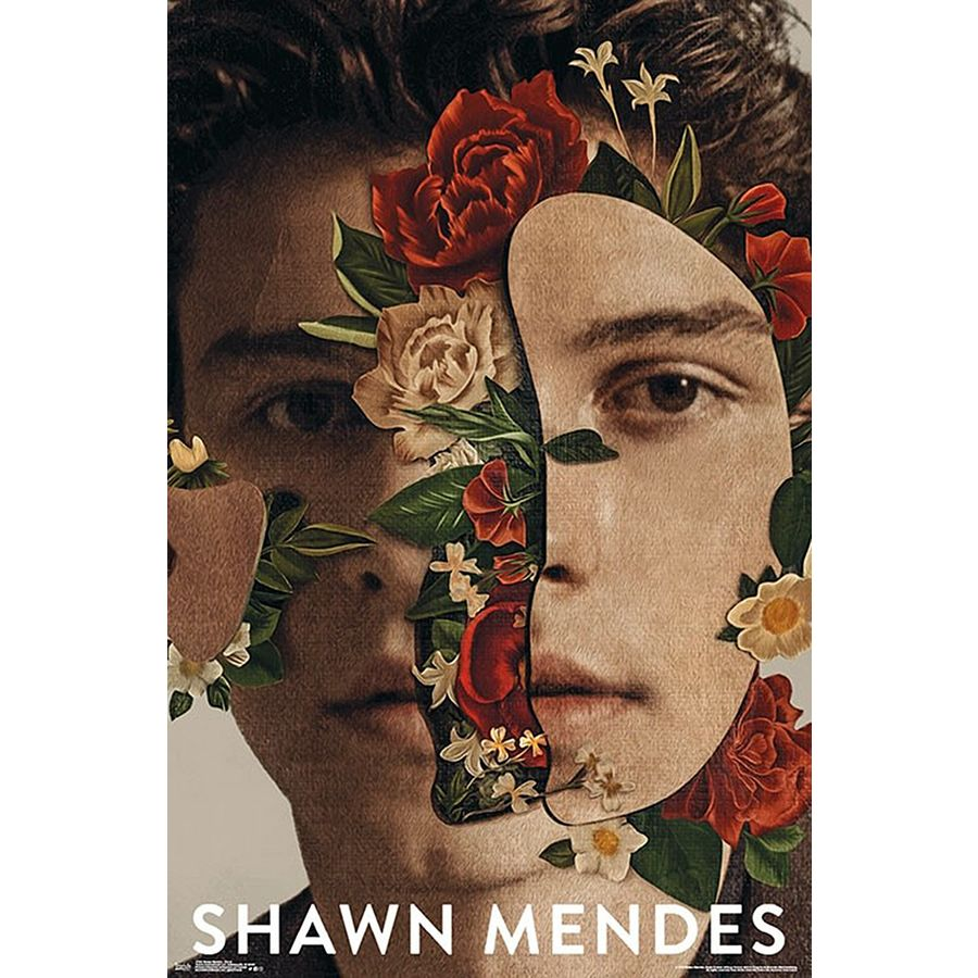 ca9ea0db Shawn Mendes Poster Floral - Posters buy now in the shop Close Up GmbH